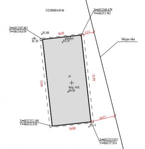 Konmtrolinė geodezinė nuotrauka